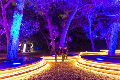 Enchanted at Descanso Gardens