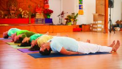 Classical Yoga with Sivananda Yoga Vedanta Center